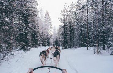 Fabulous Lapland-8